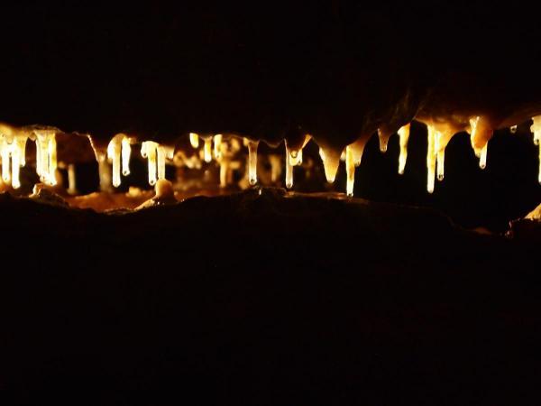 Backlit Stalactites, Crystal Cave, WI